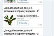 Бот цветочного магазина ДИАНА ВК