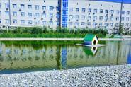 Строительство декоративных водоемов.