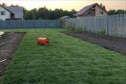 Рулонный газон.
