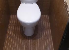 Ремонт туалета на Анохина