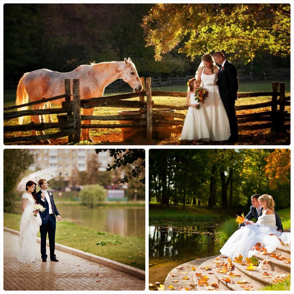 свадебные фотографии идеи осенью